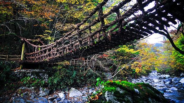 5 ที่เที่ยวญี่ปุ่นห้ามพลาด (ตอนหุบเขาอิยะ) Iya Valley